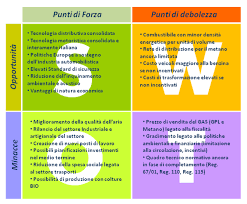 Componenti della matrice SWOT relativa all'analisi del rischio.