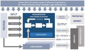 Organizzazione come sistema adattivo_da N. Gigante, I quaderni della Qualità - L'approccio per processi